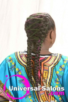 Goddess Braids Hairstyle with Hair Color from Pam Webster (5)