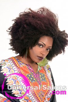 Natural Afro-Centri Black Hairstyle from Tanisha Holland (5)