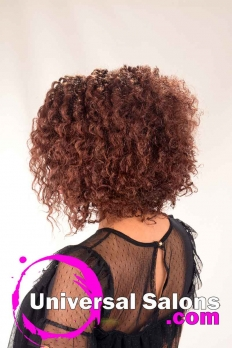 Natural Hairstyle with Braided Knots from Erma Stephens (5)