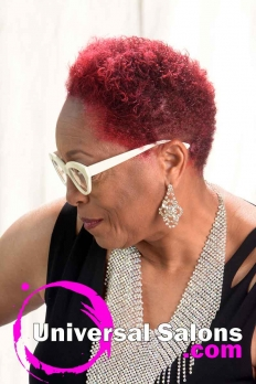Short Tiger Blood Hairstyle from Terresa Murray (4)