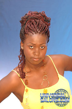 NATURAL HAIR STYLES from SHANIQUE RITCHIE