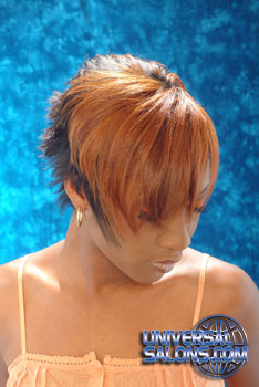 Short Hairstyle with Color from Paulette Edwards