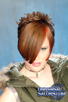 COLOR HAIR STYLES from ERMA_STEPHENS