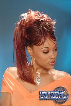 PONYTAIL HAIR STYLES from LATASHA CARROLL