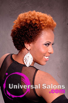 Multi-Natural Twistout Hairstyle from Brittany Davis