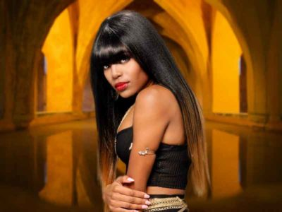 Silky Long Black Hairstyle