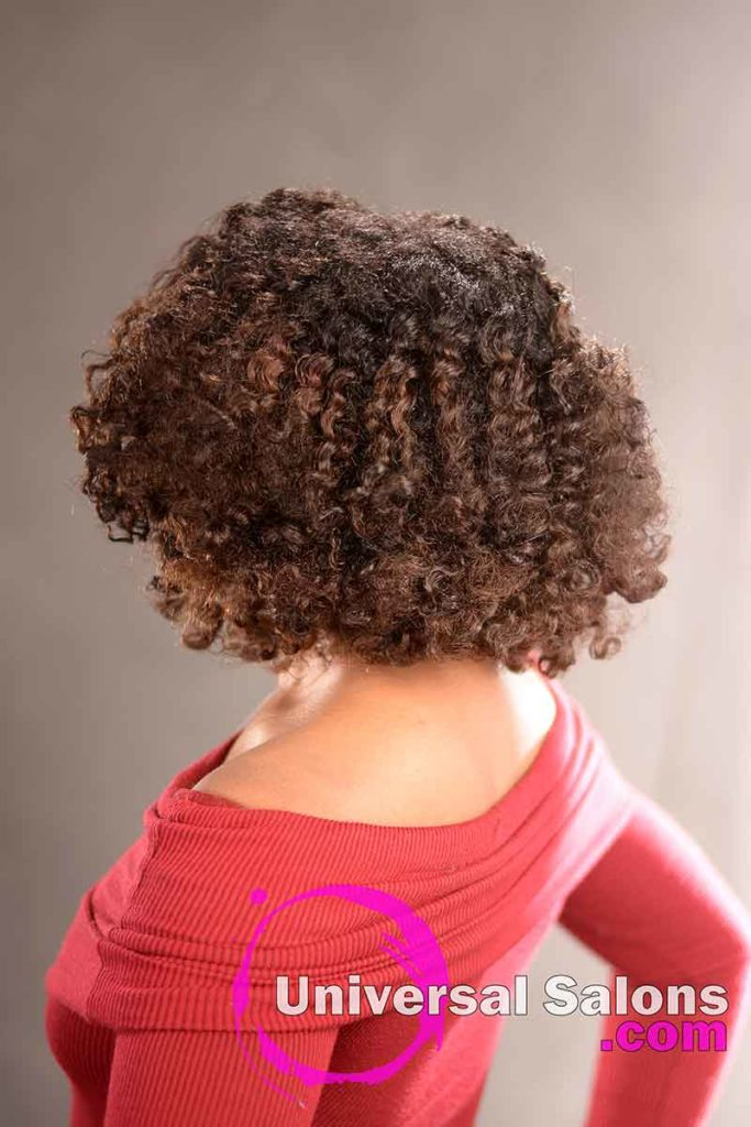 Double Flat Twist Curly Natural Hair with Highlights -8