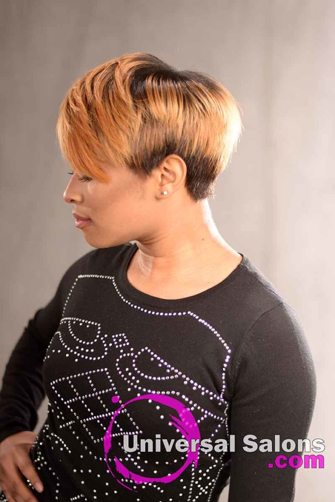 Right View; Short Hairstyle with a Custom Haircut and Ombre Color