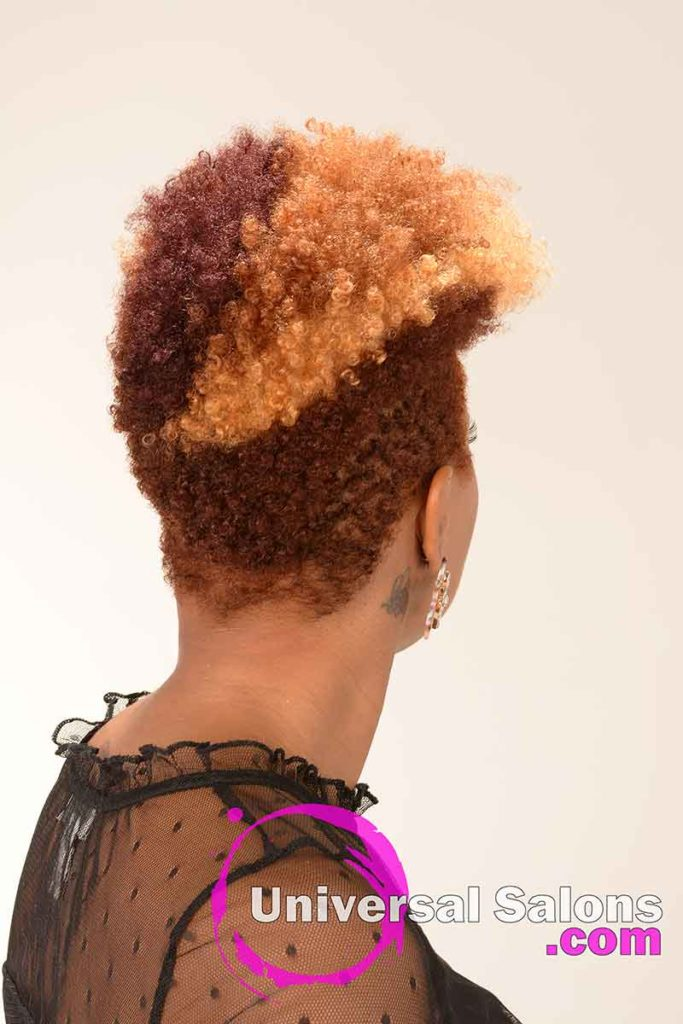Back View Short Natural Hair With Color