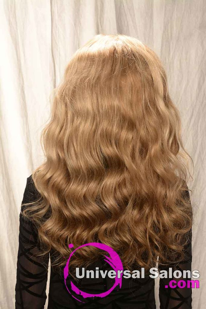 Back View of a Long Lace Front Wig Hairstyle