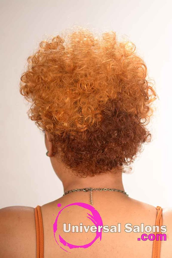 Back View of a Curly Ginger and Copper-Gold Hairstyle