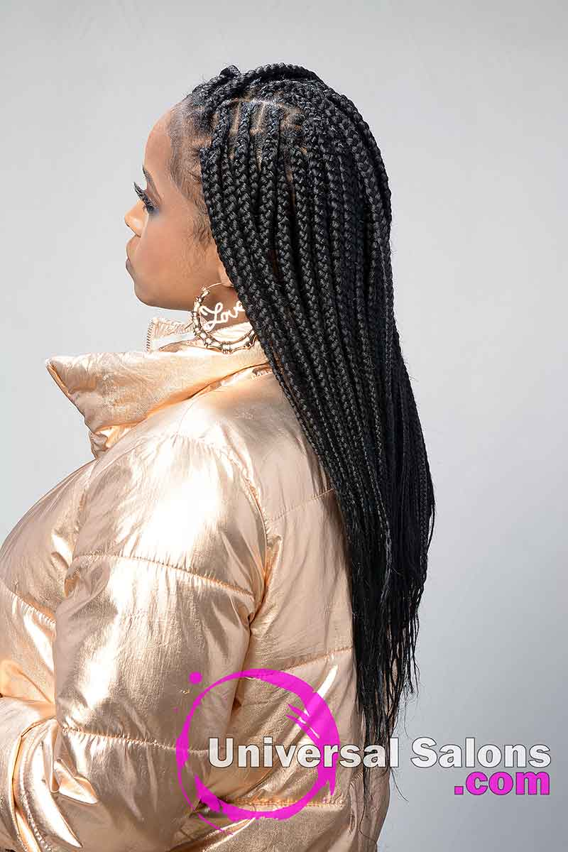 Right View Braids Hairstyle